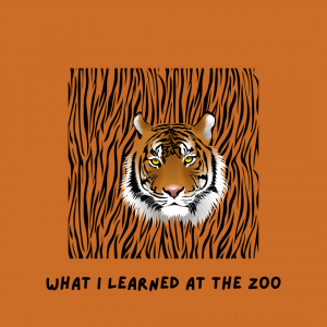 "Illustrated tiger. ""What I Learned at the Zoo."""